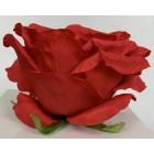 Róża wyrobowa EXCLUSIVE (6-pak) kolor 2